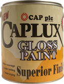 Welcome to cap plc corporate website - Exterior alkyd paint decoration ...